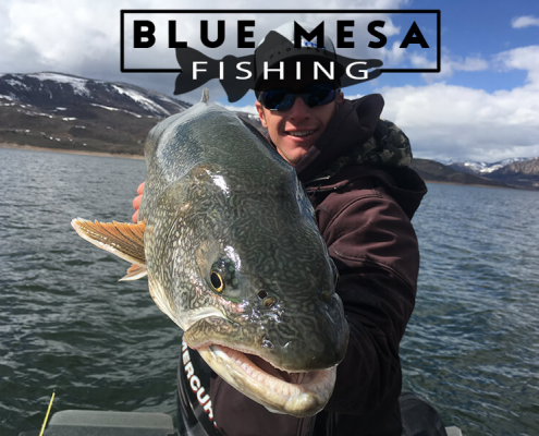 BMF Fishing Report