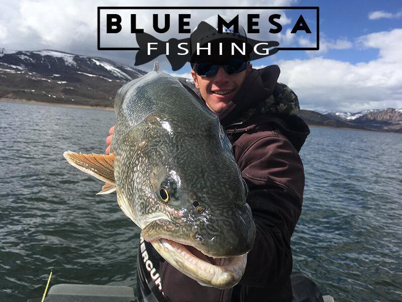 Colorado Fishing report , Blue Mesa Reservoir current fish